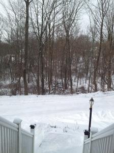January 3 2014 snow storm