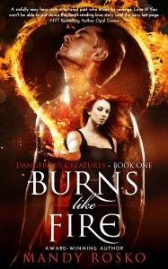 burns like fire_ebook2