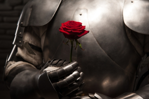 Image result for knight with rose