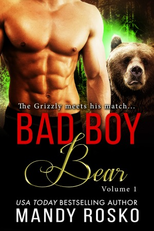 bad-boy-bear-volume-1-300x450