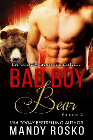 bad-boy-bear-volume-2